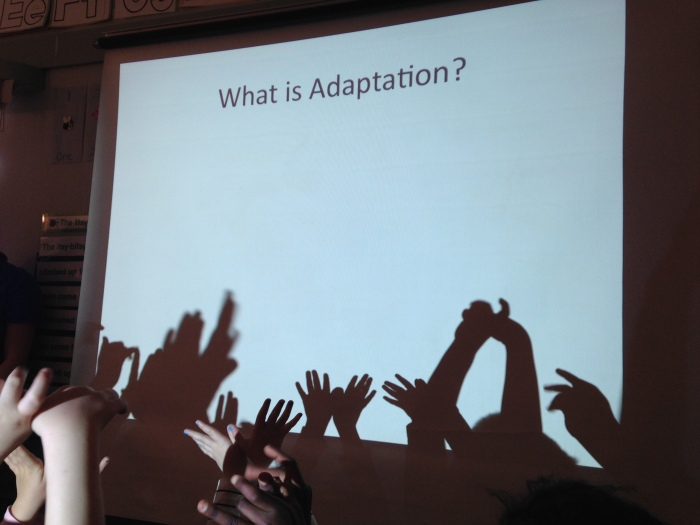 7adaptation